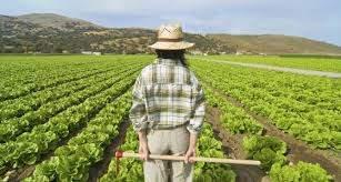 renta agraria
