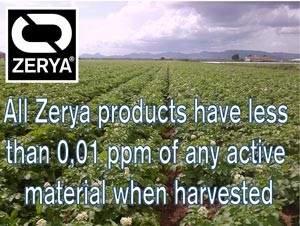 Zerya-AML