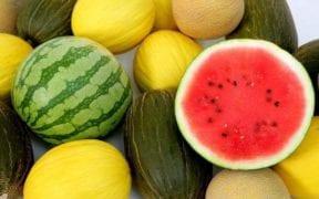 melón y sandia