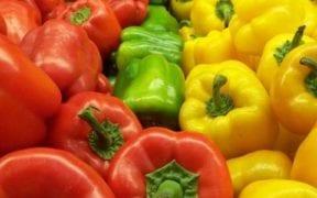 alerta pesticidas Turquía