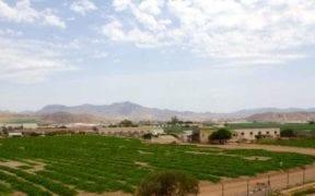 agricultura conservación