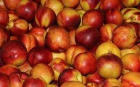 fruta dulce