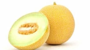 melón