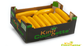 King Courgette