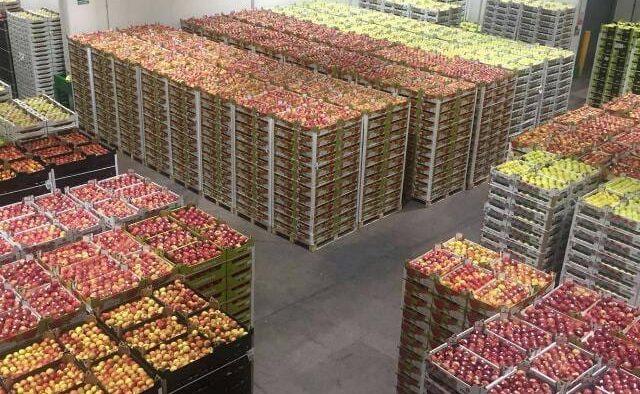Frutas Niqui