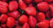 frío frutos rojos
