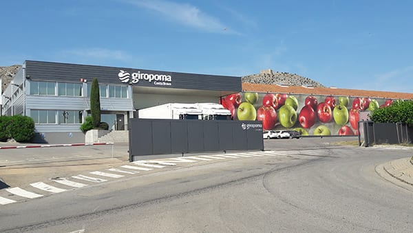 Giropoma manzana