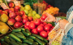 exportación hortalizas