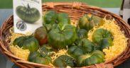 Ambrosía raf tomate HMClause