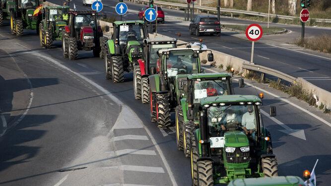 covid agricultores protagonistas
