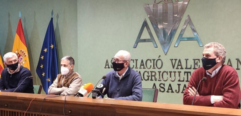 agricultura Valencia 2020