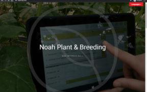 ERP investigación semillas