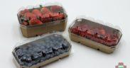 envase frutos rojos