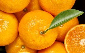 mandarina orri precios