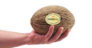 HM.Clause melón