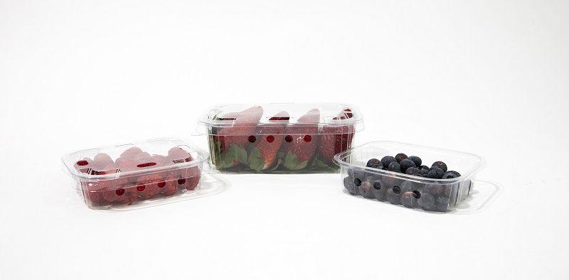 indesla envases berries