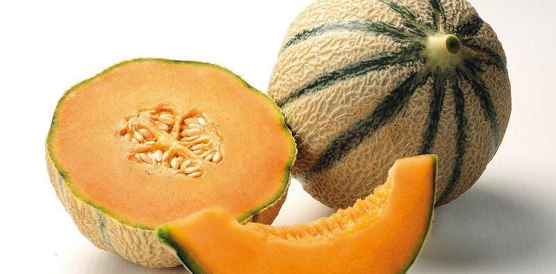 Nunhems melón