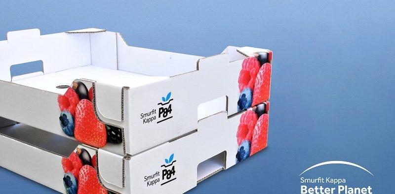 Smurfit Kappa cartón envases