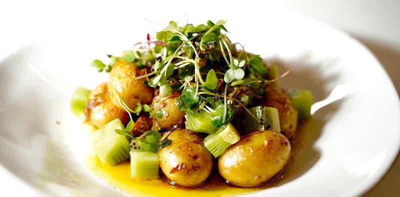 CNIPT patata