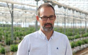 plusberries sostenibilidad directivos