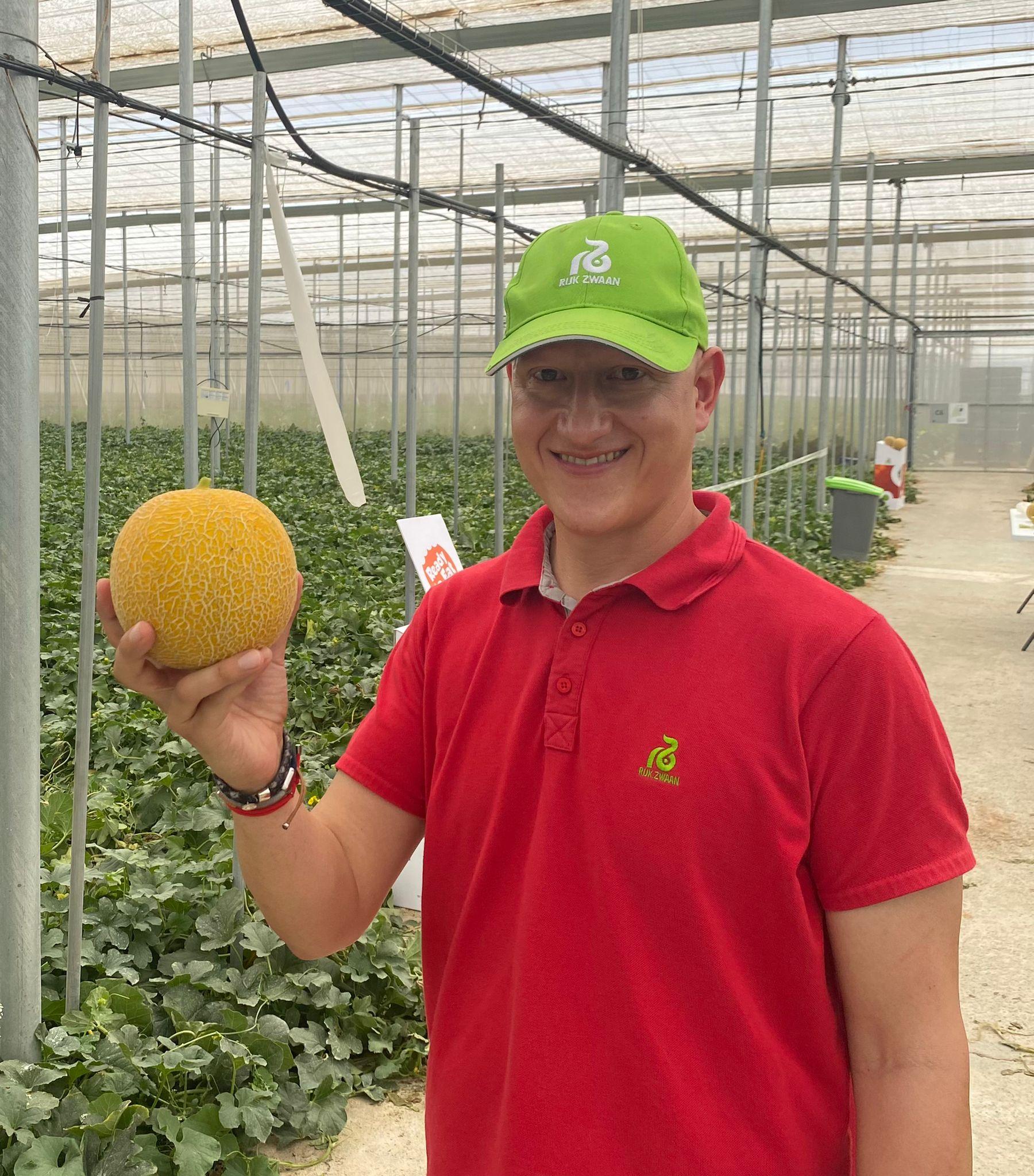 Rijk Zwaan melón galia