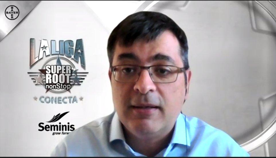 Seminis Liga Super Root