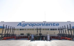 Carelsa Grupo Agroponiente mecanización