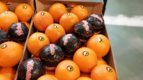 Citran cítricos Fruit Attraction