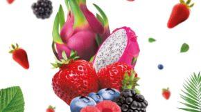 arándano Cuna de platero Fruit Attraction