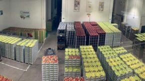 Frutas Niqui Fruit Attraction