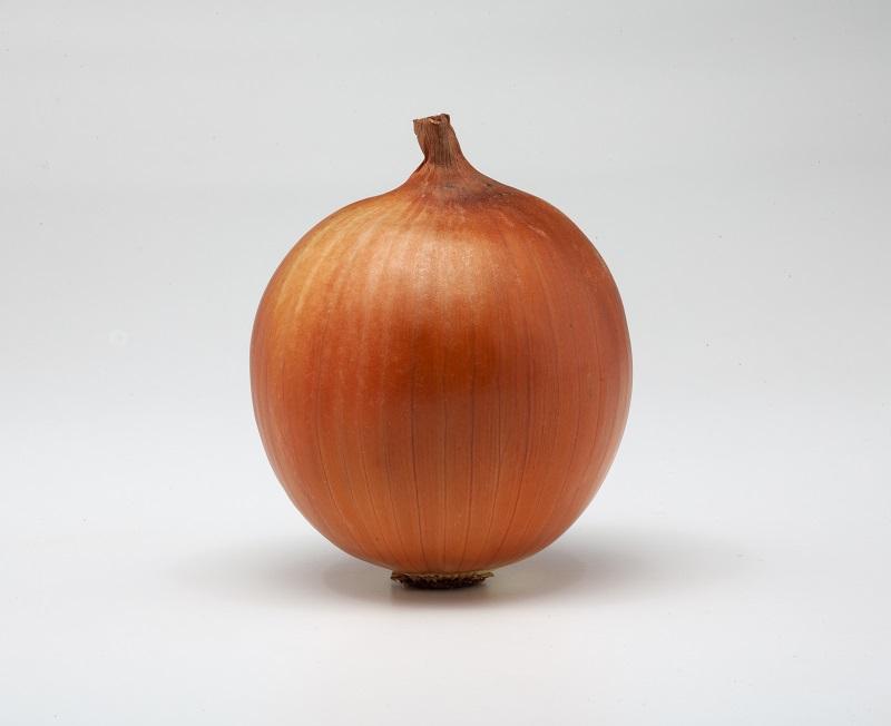 Nunhems cebolla